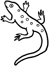Small Picture Easy lizard coloring pages ColoringStar
