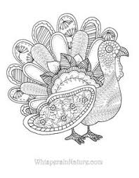 Small Picture Turkey Adult Coloring PagesAdultPrintable Coloring Pages Free
