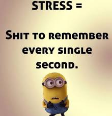 Minions Quotes Best Top 48 Funny Minions Quotes Cutest Cats