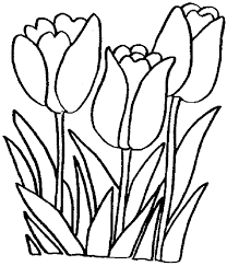 Small Picture Tulip Coloring Pages Free Printable Coloring Pages for Kids