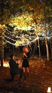 Christmas Light Proposal Pin By Trent Ethridge On Proposals Propuestas De