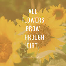 Inspirational Quote Gorgeous Inspirational Quote Flowers Grow Through Dirt Lakehouse Recovery