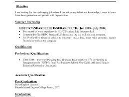 Download Standard Format Resume Haadyaooverbayresort Com