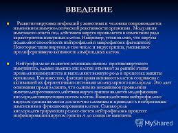 Презентация на тему БЕЛОРУССКИЙ ГОСУДАРСТВЕННЫЙ УНИВЕРСИТЕТ  2 ВВЕДЕНИЕ