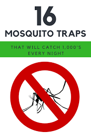 16 best mosquito trap ideas that will catch 1 000 s of mosquitos every night