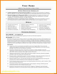 Personal Resume Website New Business Document Free Resume Ideas