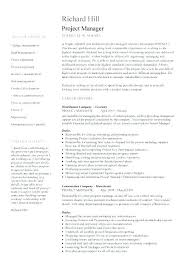 Example Of Customer Service Resume Classy Example Summary For Resume Resume Executive Summary Sample Resume
