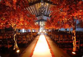 56 Unique Rustic Fall Wedding Ideas  Temple SquareBackyard Fall Wedding