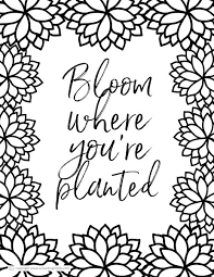 What you have here is the ultimate colouring book for adults with lots of different categories: Free Printable Coloring Pages For Adults In Florals And Succulents A Country Girl S Life