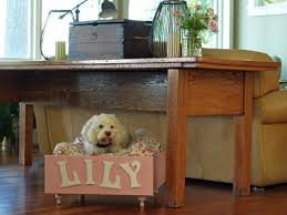 pet bed furniture. CI-Susan-Teare_Dog-Bed-Made-From-Drawer_s4x3 Pet Bed Furniture