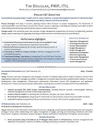 executive resume samples resume examples punchy resume what are the different types of resume