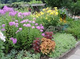 flower garden layout perennial ideas three seasons cut plans for year round