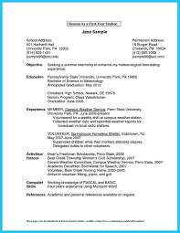 Business Plan Owner Resumes Small Resume Sample Best Of Capture