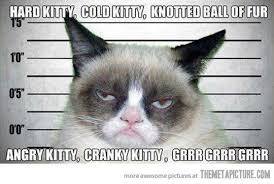 Grumpy cat sings the 'soft kitty' song... - The Meta Picture via Relatably.com