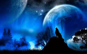 606 x 1280 jpeg 56 кб. Bloody Wolf Hd Wallpapers Wolf Wallpapers Pro