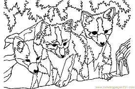 Small Picture Three Fox Coloring Page Free Fox Coloring Pages