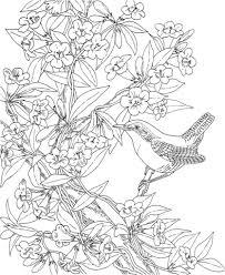 サウスカロライナ州の鳥チャバラマユミソサザイと花イエロージャスミン