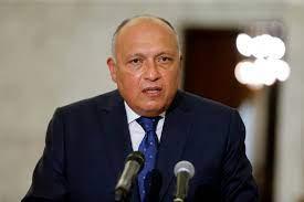 كلمة وزير الخارجية المصرى سامح شكرى أمام مجلس الامن بخصوص سد النهضة