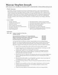 Hr Resume Examples Luxury Professional Resume Summary Statement