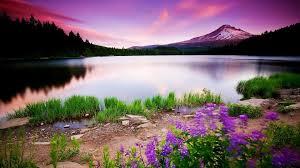 Nature - Field, Landscape, Mountain ...