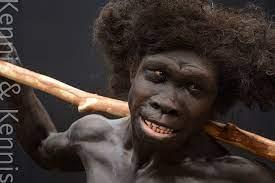 Ancient humans, Human ...