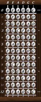 5 String Bass Chord Chart 6 String Bass Notes Chart Www Bedowntowndaytona Com