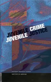 introduction juvenile crime juvenile justice the national  looking for other ways to this