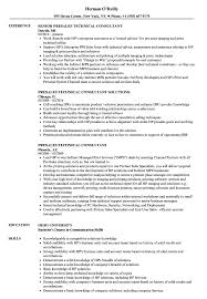 Download Presales Technical Consultant Resume Sample as Image file