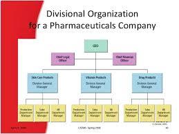 Pharmaceutical Company Organizational Chart Organizational Structure
