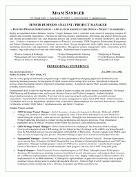 Business Analyst Project Manager Resume It Summary Reference Sample
