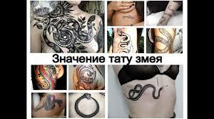 значение тату змея смысл рисунка и фото примеры для сайта Tattoo Photoru