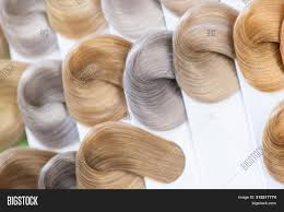 Sample Hair Colors Chart Hair Color Chart Image Photo Free Trial Bigstock