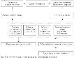 Організаційна структура і функції органів державної  Центральне керівництво роботою органів державної статистики на державному рівні здійснює Державний комітет статистики ДКС України який є головним