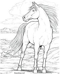 Horses Coloring Page Wild Horse Coloring Pages Realistic People