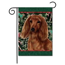 longhaired dachshund flag red holiday treats garden