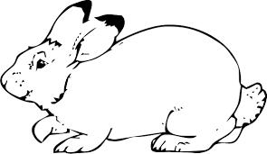Disegni Di Animali Da Stampare E Colorare Gratis