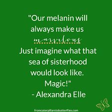 Melanin Quotes