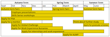 Year Timeline Second And Penultimate Year Careers Timeline