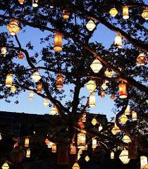 outside lighting ideas for parties. lanterns in an oak tree backyard love outside lighting ideas for parties u