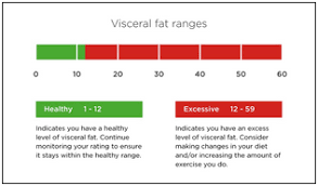 Visceral Fat Chart Understanding Your Measurements Tanita
