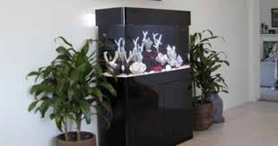 furniture aquarium. kaboodlecom aquariums coffee table aquarium aquatic furniture acrylic columns