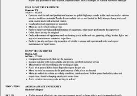 Semi Truck Driver Resume Examples Beautiful Entry Level Resume