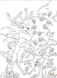 Kleurplaat Hert En Bambi In Het Bos Kleurplaat Kleurplaatjenl