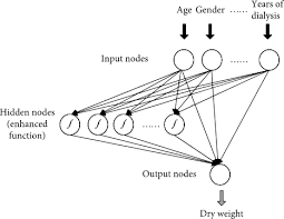 Assessing Dry Weight of Hemodialysis Patients via Sparse Laplacian  Regularized RVFL Neural Network with L2,1-Norm