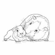 Small Picture Guinea pig in a box coloring page Tennie Pinterest Box and Craft