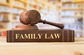 Image result for courtroom family law