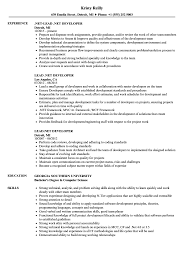 Net Developer Resume Sample Lead NET Developer Resume Samples Velvet Jobs 64