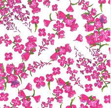 alaskan wildflowers fireweed white y1894 1792