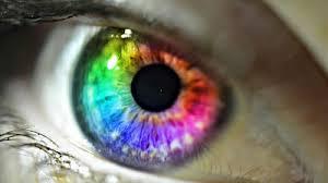 「眼球」の画像検索結果