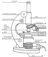 Types Of Microscopes Chart A Labeled Diagram Of A Microscope Mlt 101 Medical Lab